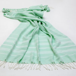SUPER SOFT | MINT TOWEL