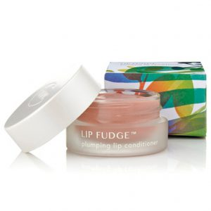 LIP FUDGE | PLUMPING LIP CONDITIONER | ROSEWOOD