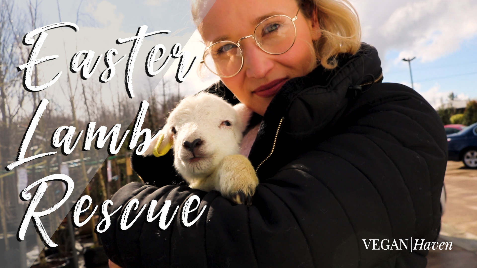Easter Lamb Rescue