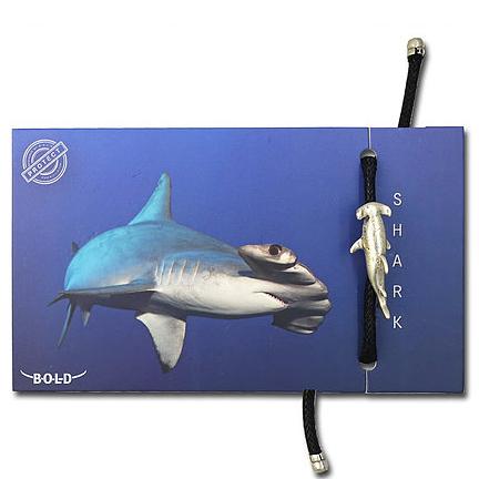HAMMER SHARK | BRACELET | B-O-L-D