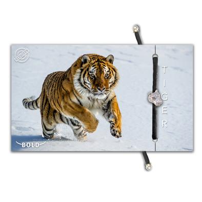 B-O-L-D Tiger Bracelet 1