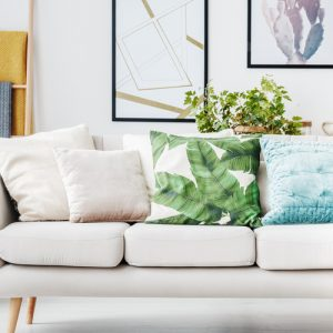 All Cushions
