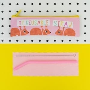 My Reusable Straw | Straw Set