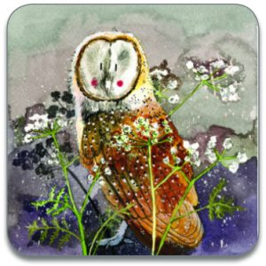 BARN OWL | COASTER
