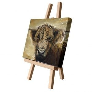 COLOURFUL HAMISH | CANVAS CUTIE