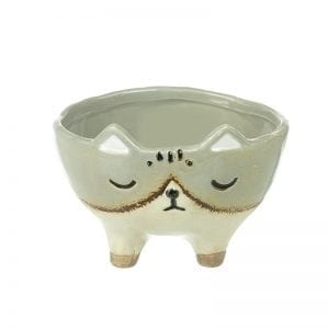 Ceramic Cat Pot