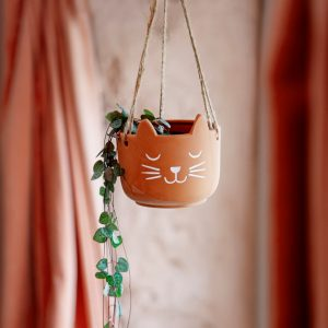 Cat's Whiskers Terracotta Hanging Planter