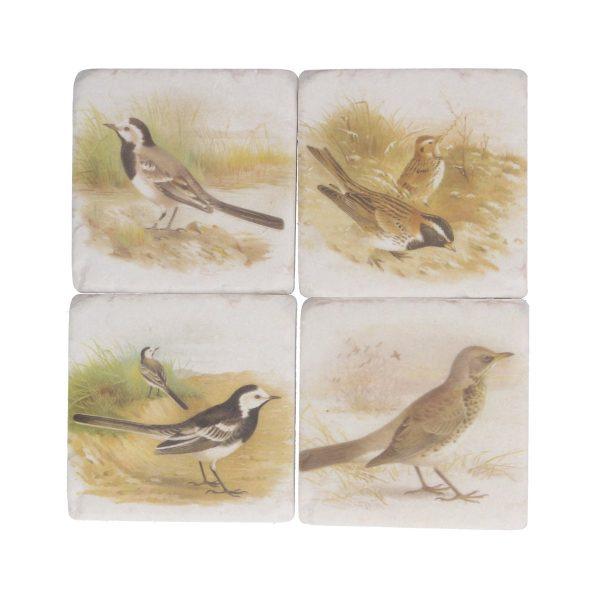 Soft Tone Bird Set of 4 Coasters