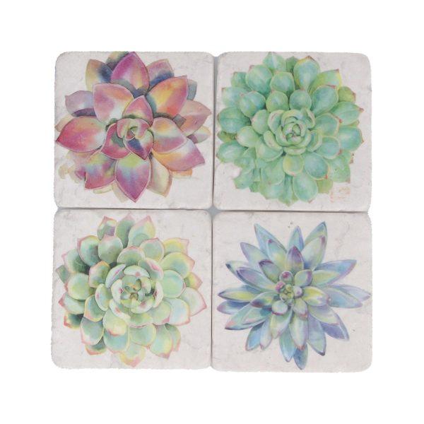 Succulent Set of 4 Coasters